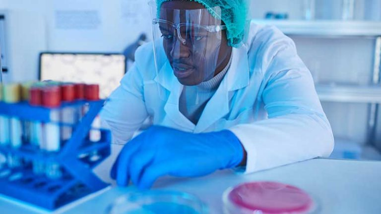 Doctor working with medical analysis stock photo.